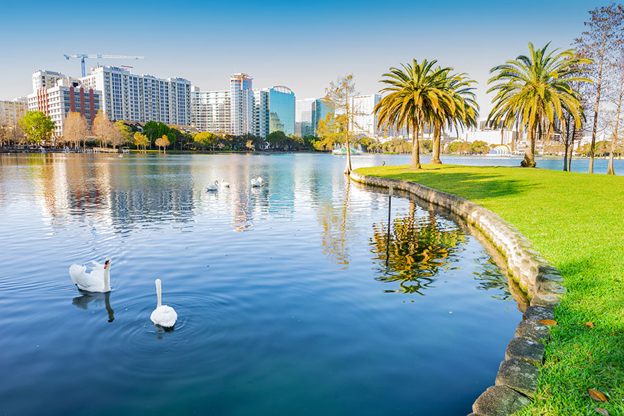 Orlando, FL Insurance - Orlando Florida Skyline with Blue Lake with Swans